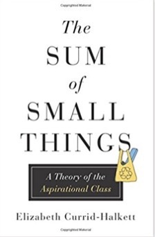The Sum of Small Things A Theory of the Aspirational Class Elizabeth Currid Halkett 9780691162737 Amazon com Books